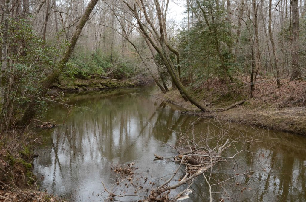 Little Fishing Creek in Medoc Mountain State Park