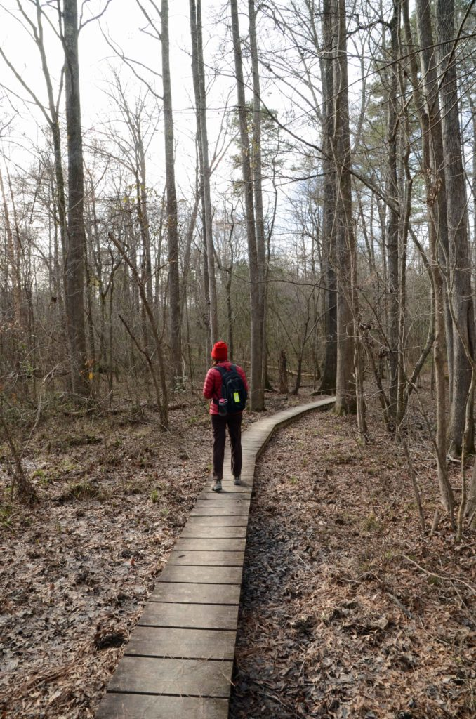 Woman crossing boardwalk on trail at Medoc Mountain State Park
