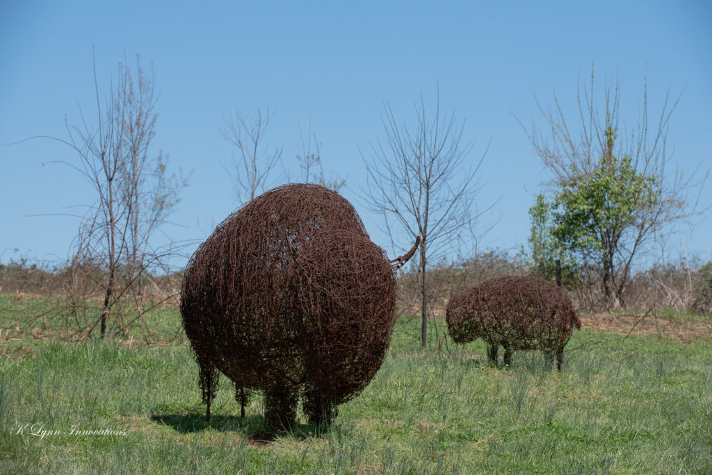 Two wire bison sculptures in a meadow at Prairie Ridge Ecostation