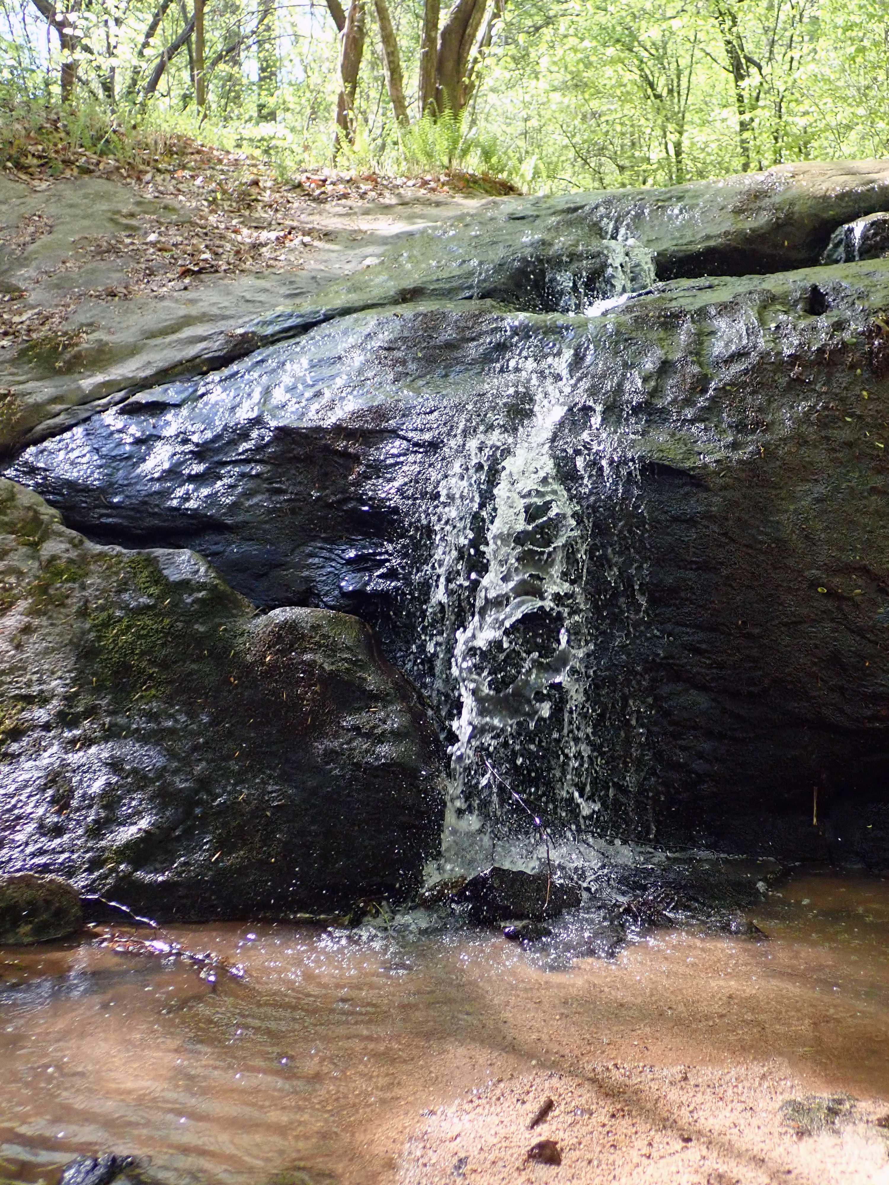 Small waterfall over rock outcrop in Dehart Botanical Gardens