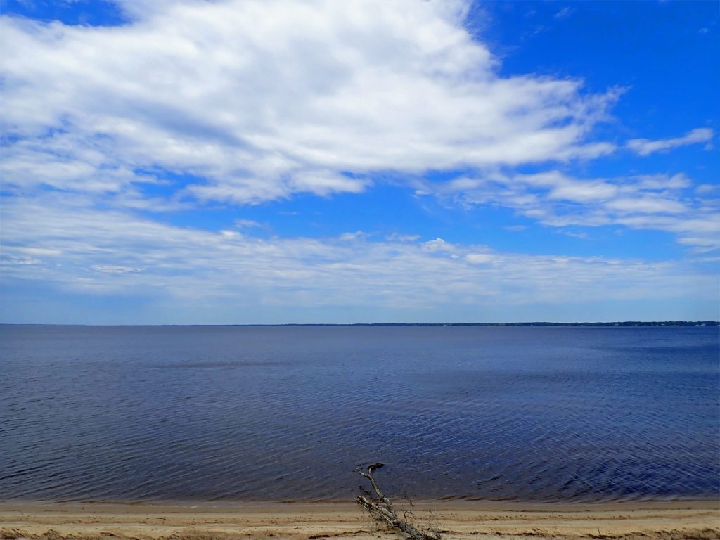 Neuse River view