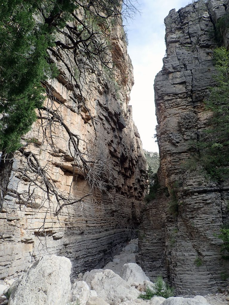 Narrow Canyon at Devil's Hall