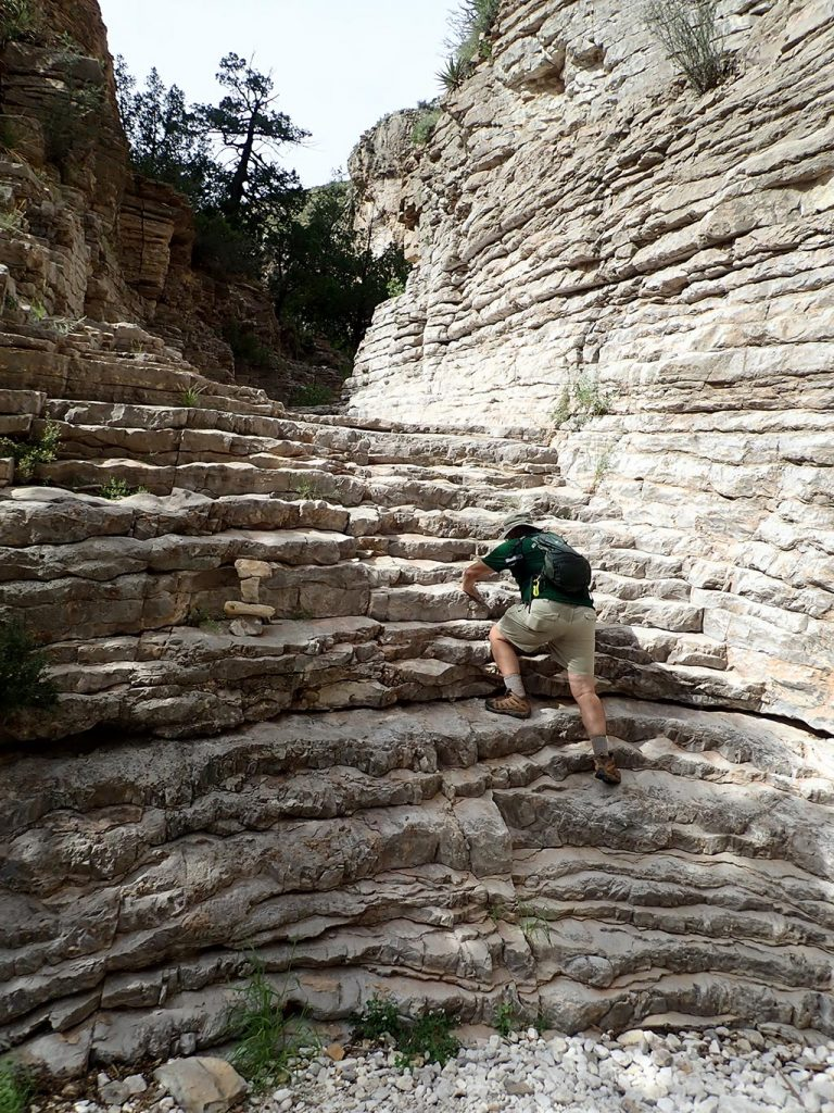 man climbing up ledge in Guadalupe Mountains National Pakr