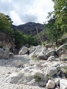 River wash with boulders and mountain in background