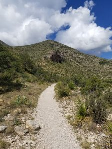 Stone path of McKittrick Canyon Trail with mountain in background