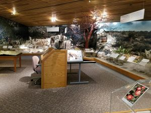 Exhibits at Pine Springs visitor center in Guadalupe Mountains National Park
