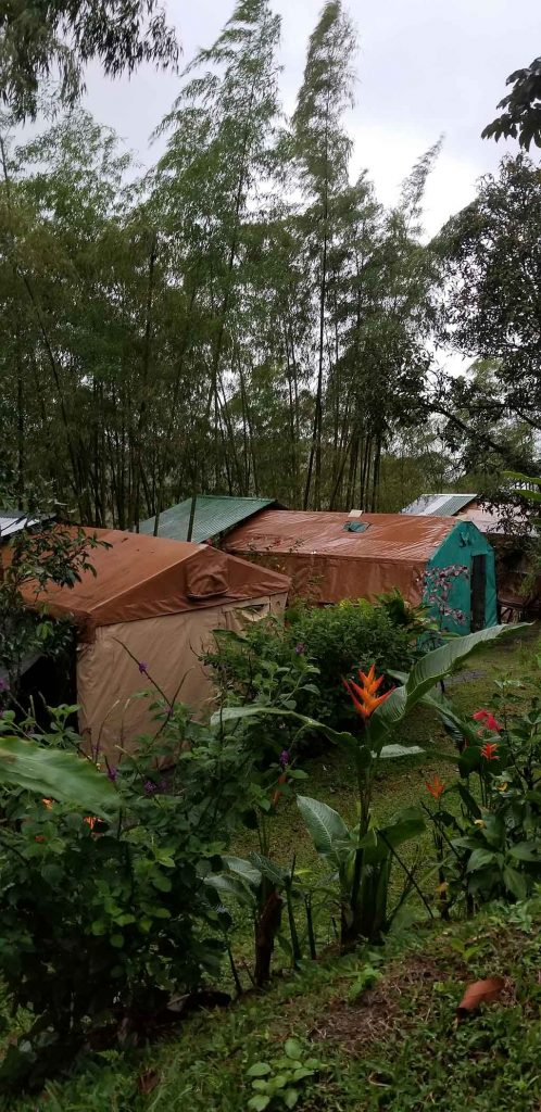Glamping - canvas tents at Essence Arenal